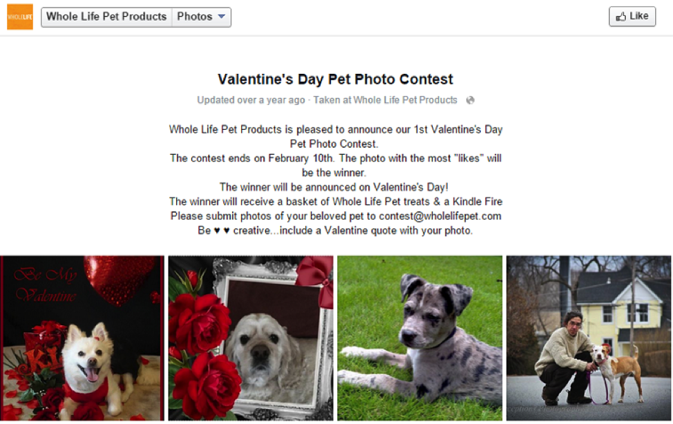 Whole Life Pet Products Photo Contest