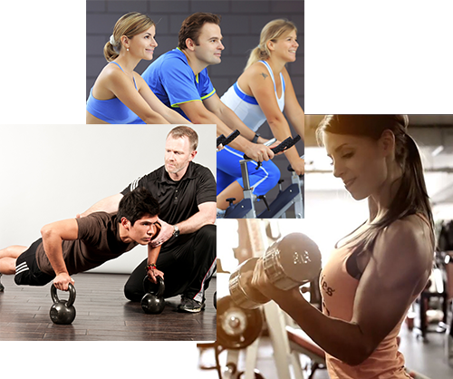 Go Gym Fitness Center